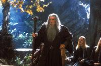 Die Zeit drängt: Gandalf (Ian McKellen) weiß, dass der Ring so schnell wie möglich vernichtet werden muss ...