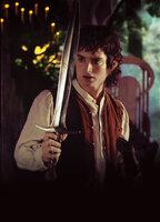 Frodo (Elijah Wood) wird bei einem Angriff schwer verletzt. Er gelangt jedoch noch rechtzeitig ins Bruchtal, wo ihn Hilfe erwartet ...