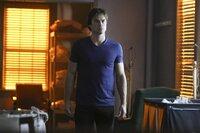Bei seiner Suche nach einem verschollenen Mitglied von Lilys Familie wird Damon (Ian Somerhalder) mehr als nur ein wenig überrascht ...
