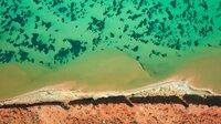 . Die größten Seegraswiesen der Welt finden sich vor der australischen Küste. Sie sind effektive Kohlendioxid-Speicher.