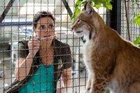 Das Auge des Luchsweibchens tränt. Tierärztin Dr. Mertens (Elisabeth Lanz) muss das Tier binnen kürzester Frist kurieren, weil es in den nächsten Tagen ausgewildert werden soll.