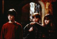 Ein unschlagbares Trio: Harry Potter (Daniel Radcliffe, l.), Ron Weasley (Rupert Grint, M.) und Hermione Granger (Emma Watson, r.) ...