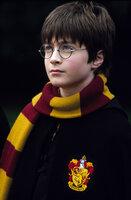 Das trübe Schicksal des elfjährigen Waisen Harry Potter (Daniel Radcliffe) wendet sich, als er die Einladung erhält, die berühmte Zaubererschule Hogwarts zu besuchen ...