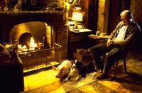 Hoggett (James Cromwell, r.) kann kaum glauben, dass Babe seine Schafe besser im Griff hat als Schäferhund Rex ...