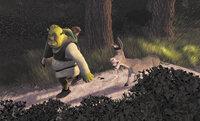 Mit ihrem zickigen Verhalten kommt Prinzessin Fiona (l.) bei Shrek (M.) nicht weit. Er will sie und den sprechenden Esel (r.) so schnell wie möglich wieder loswerden ...