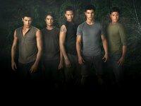 Jacobs Clique (v.l.): Paul (Alex Meraz), Embry Call (Kiowa Gordon), Sam Uley (Chaske Spencer), Jacob Black (Taylor Lautner) und Jared (Bronson Pelletier)
