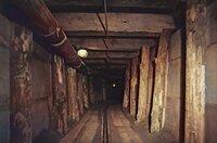 Abschnitt des 135 Meter langen Tunnels