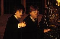 Müssen das Geheimnis der Kammer des Schreckens lösen: Harry Potter (Daniel Radcliffe, l.) und sein bester Freund Ron Weasley (Rupert Grint, r.) ...