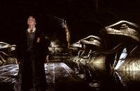 Auf dem gefährlichen Weg zur geheimnisvollen Kammer des Schreckens: Harry Potter (Daniel Radcliffe) ...