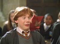 Obwohl Ron Weasley (Rupert Grint) aus einer Zaubererfamilie stammt, ist auch er nicht vor Überraschungen sicher …