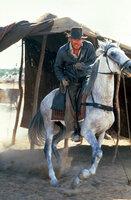 Immer im Einsatz des Guten: Indiana Jones (Harrison Ford) ...