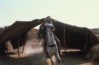 Indiana Jones (Harrison Ford) findet immer einen Ausweg. Oder?