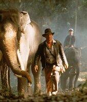 Selbst die Elefanten folgen nur einem: Indiana Jones (Harrison Ford) ...