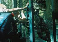 Jurassic Park III Mensch gegen Dinosaurier SRF/2001 Universal Studios