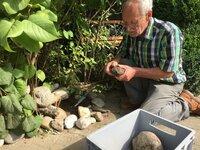 Einer der Steine im Garten von Hans Hartl macht einen ungewöhnlichen Eindruck: Handelt es sich um einen ganz normalen Stein, oder steckt vielleicht doch mehr dahinter?