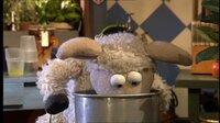 Oh nein! Pferd kann seine Kuschelmöhre nicht finden! Er und Wolle stellen die ganze Möhre auf den Kopf und suchen überall.