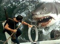 Martin Brody (Roy Scheider) führt einen Kampf auf Leben und Tod gegen den Killer-Hai.