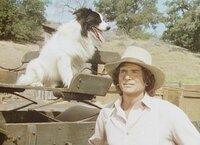 """Ein streunender Hund hat sich Charles (Michael Landon) angeschlossen. Wegen seiner sonderbaren Musterung nennen ihn die Ingalls """"Bandit""""."""