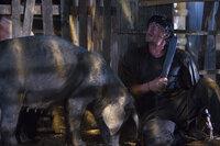 Hat das Kämpfen schon vor geraumer Zeit aufgegeben, doch als es brennt, kann er sofort auf jahrelange Erfahrung zurückgreifen: Rambo (Sylvester Stallone) ...