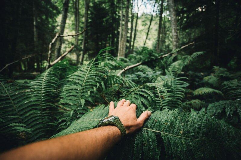 Amazon.de: Naked Survival - Ausgezogen in die Wildnis