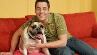 """Dennie Klose, der SUPER RTL Fachmann in Comedy-Fragen, hat das weite Feld der Fernsehsketche durchforstet, gesichtet und selektiert. Das Resultat: """"Comedy TOTAL"""". Stets an Dennie Kloses Seite ist seine charmante Co-Moderatorin Emma, eine waschechte Bulldoge."""