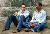 1947 wandert der unschuldige Andy Dufresne (Tim Robbins, l.) lebenslang hinter Gitter. Im Gefängnis freundet er sich mit Red (Morgan Freeman, r.) an ...