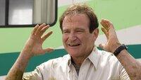 Bob Munro (Robin Williams) und seine Familie reisen in einem gemieteten Wohnmobil nach Colorado - mit einigen Zwischenfällen!