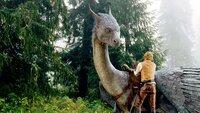 Eragon (Ed Speleers) lernt auf Saphira zu reiten und die Magie kontrolliert einzusetzen.