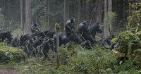 Unbehelligt von den wenigen überlebenden Menschen in den Wäldern um San Francisco haben Caesar und die Affen-Kolonie ihre eigene Zivilisation aufgebaut. Als Menschen in ihr Territorium einbrechen, eskaliert schon bald die Situation ...