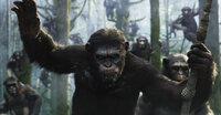 Schon bald muss Caesar (Andy Serkis) erfahren, dass nicht nur unter den Menschen Eigenschaften wie Bösartigkeit, Machtgier und Mord beheimatet sind ...