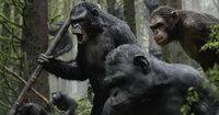 Nicht nur Menschen, sondern auch Affen mangelt es oft nicht an Bösartigkeit: Demagoge Koba (Toby Kebbell, l.) startet einen Mordversuch an Caesar und führt die führungslose Affenschar in ein mörderisches Gefecht gegen die Menschen ...