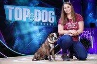 Isabelle mit ihrem Continental Bulldog _Tiffy_.