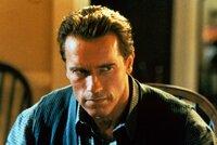 Viele Jahre gelingt es dem Top-Agenten Harry Tasker (Arnold Schwarzenegger), sich als Computerhändler zu tarnen. Doch dann steht die Welt plötzlich kurz vor einem Nuklearkrieg ...