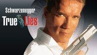 True Lies - Wahre Lügen - Artwork