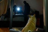 Ein Ehepaar wird nachts durch das Bellen ihres Hundes geweckt. Doch bevor die Eheleute reagieren können, stehen drei maskierte Männer am Bett und bedrohen sie. Die Erlebnisse dieser Nacht verfolgen das Paar bis heute.