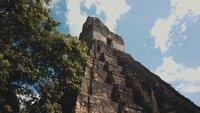 Die Tempelpyramiden in Tikal sind bis zu 50 Meter hoch.