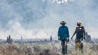 Um die empfindliche Vegetation Australiens zu schützen, legen die Ureinwohner Australiens, die Aborigines, seit Jahrhunderten Feuer.