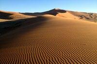 """NDR Fernsehen MARETV, """"Am Kap der Guten Hoffnung - Südafrika zwischen den Ozeanen"""", am Donnerstag (07.11.13) um 21:00 Uhr. Namibias Namensgeber: die Namib-Wüste."""