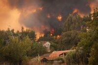 Die Fläche zerstörten Waldes im Mittelmeergebiet durch Waldbrand wird auf 1 Million ha pro Jahr geschätzt.