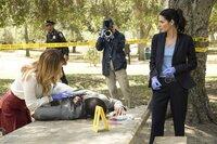 Ein neuer Fall für Rizzoli (Angie Harmon, r.) und Isles (Sasha Alexander, l.): Ein Buchprüfer wird erschossen im Park aufgefunden und nicht weit von Fundort der Leiche trifft Jane auf einen alten Bekannten ...