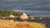 """ARD/NDR WILDES BALTIKUM, """"Die Küste"""", am Sonntag (19.10.14) um 19:20 Uhr im ERSTEN. Der Lahemaa Nationalpark im Norden Estlands ist geprägt von riesigen Felsbrocken."""