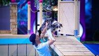 "Maik mit seinem Australian Shepherd ""Monchi"" in Runde 1."