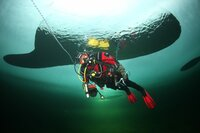 Underwater diver.