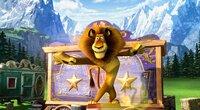 Alex steht als Löwe ganz oben auf der Wunschliste der Großwildjägerin.