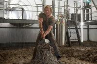 Eigentlich hatte es sich Thor (Chris Hemsworth) einfacher vorgestellt, den Hammer Mjölnir wieder an sich zu nehmen, aber Odin legt ihm Steine in den Weg ...
