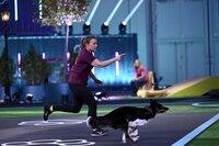 """Mona mit ihrem Border Collie """"Qju"""" in Runde 2 des Finales, dem _Doghouse_."""