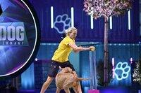 Jule Prins mit ihrem Magyar Viszla und Drahthaar Mix _Kalle_ in Runde 2 des Finales, dem _Doghouse_.