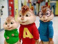 Theodore, Alvin und Simon treffen in der Schule auf eine rivalisierende Mädchenband, die 'Chipettes', die sich in Sachen Musik als schwere Konkurrenz für die Jungs erweisen.