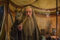 Nachdem der Weiße Rat ihn aus Dol Guldur befreit hat, macht sich Gandalf (Ian McKellen) sofort mit wichtigen Informationen auf den Weg zum Einsamen Berg und trifft dort auf den Zwerg Bilbo, welcher mehr als einen Gegenstand aus Smaugs Schatzkammer entwendet ...