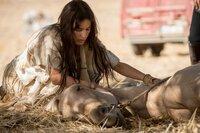 Tara (Nicolette Krebitz) Tara (Nicolette Krebitz) versucht ihrem Pferd zu helfen.